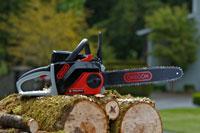 Oregon Cordless Chainsaw